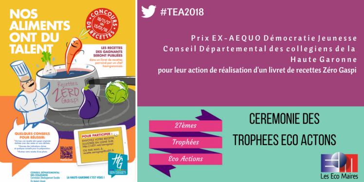 Conseil departemental des collegiens de Haute Garonne TEA PRIX EX AEQUO DEMOCRATIE JEUNESSE CANVA 9