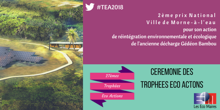 Ville de Morne-a-l'eau 2eme Prix TEA CANVA 6