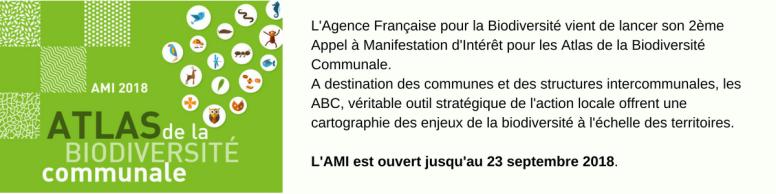 ABC-Info