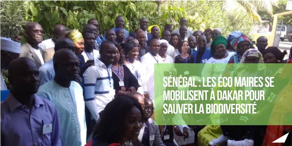 Eco Maires Afrique (2).png