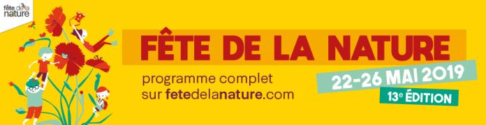 FDLN 2019 - 970 x 250